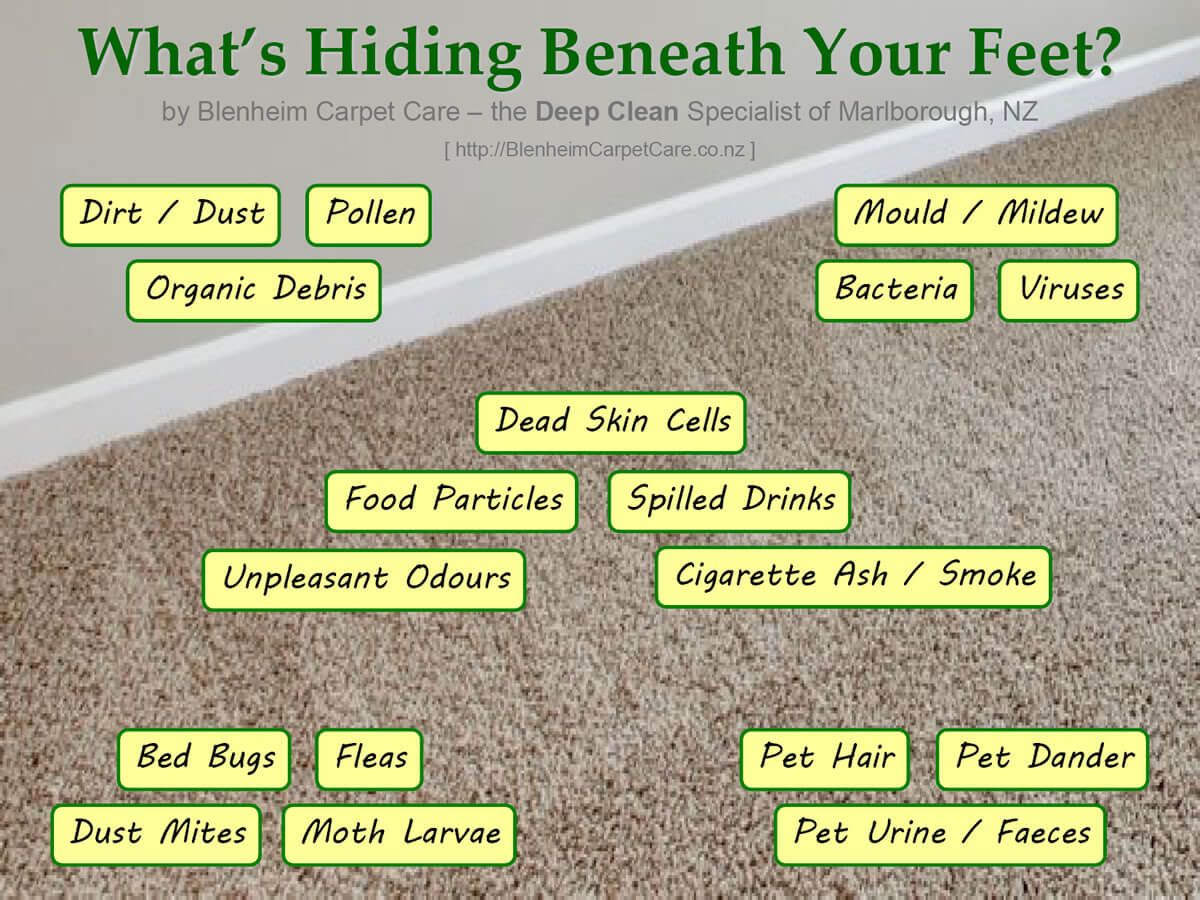 What's Hiding Beneath Your Feet?