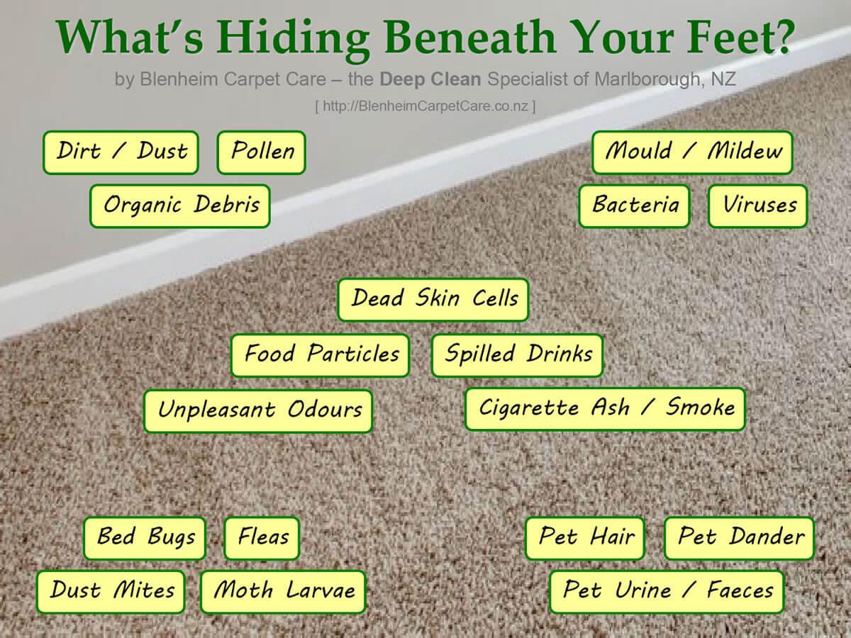 What's Hiding Beneath Your Feet?